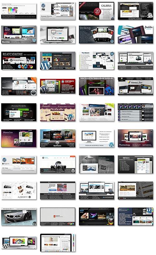40-amazing-premium-wordpress-themes-of-octomber-2010