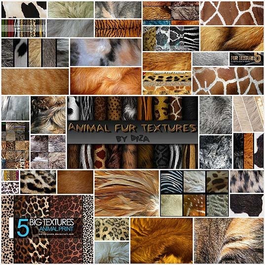 175-Free-High-Res-Animal-Fur-Textures-For-Your-Designs