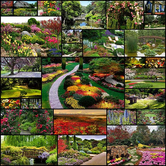30free-garden-wallpaper
