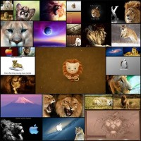30mac-os-x-lion-wallpaper
