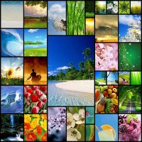 35spring-and-summer-iphone-wallpapers-collection