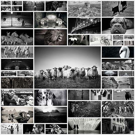 45black-and-white-photos