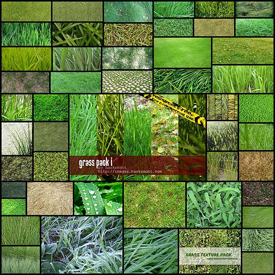 50-free-high-resolution-grass-textures-for-designers