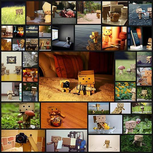 40danbo-photos