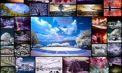 50-infrared-photography-examples