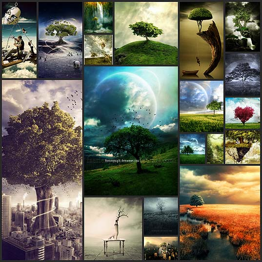 tree-photo-manipulations20