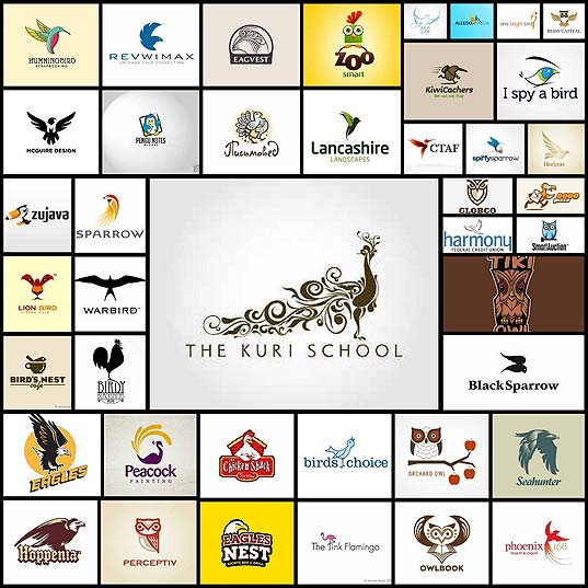 50bird-logo-designs