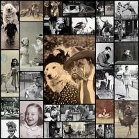funny_and_wtf_vintage_animal_pics_30_pics