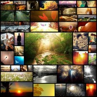 through-sunlight-sunlit-photography-showcase40