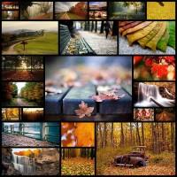 25-amazing-autumn-photos