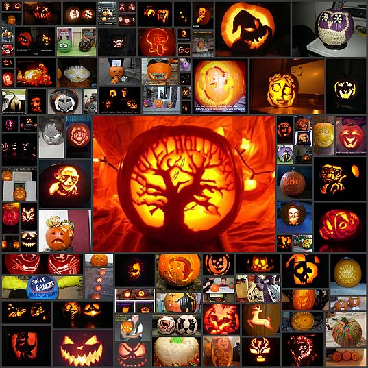 berries-carve-the-best-pumpkins-96-photos