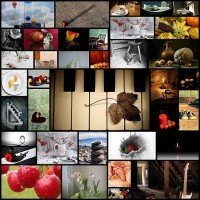 36-outstanding-examples-of-still-life-photography