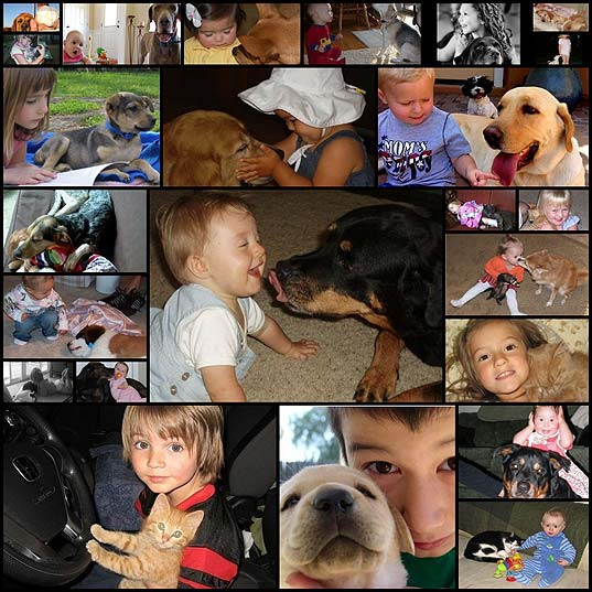 daily-awww-kids-animals-melts-my-heart-24-photos