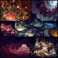 fractal-flowers8