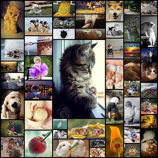 kollekciya-emocionalnyh-snimkov-chast-11-50-foto