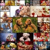 free-teddy-bear-wallpaper25