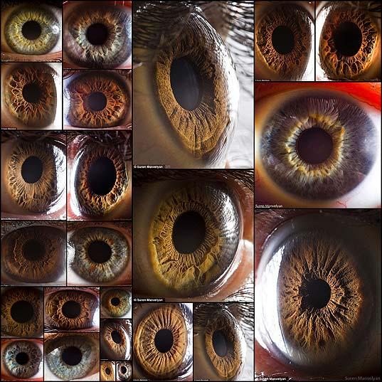 macro_eye25
