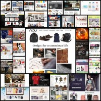 professionally-looking-ecommerce-web-design30