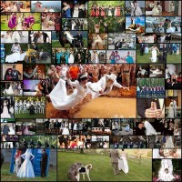 funny-wedding-photos601