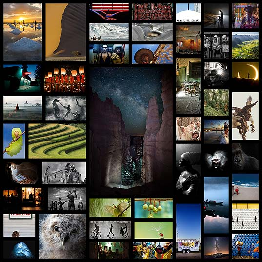 Smithsonian-photo-contest50