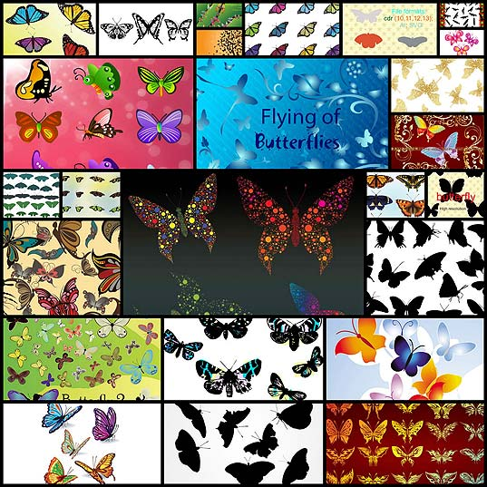 free-vector-butterfly-high-resolution25