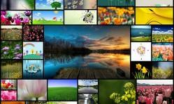Spring--Nature-Desktop-Wallpapers50