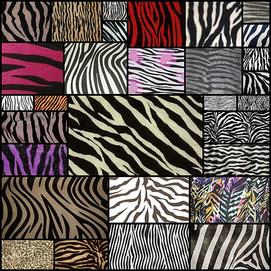 zebra-print-texture-free-download30