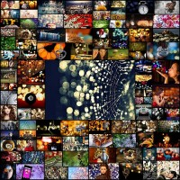 99-extreme-examples-of-bokeh-photography