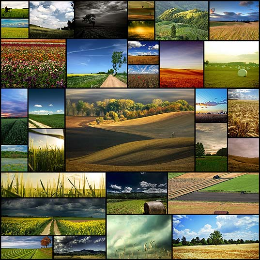field-of-dreams-30-amazing-photographs-to-leave-you-inspired