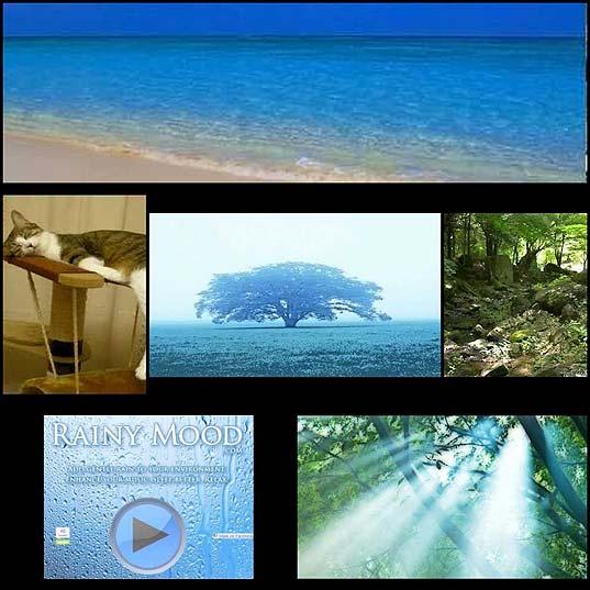 environmental-sound6