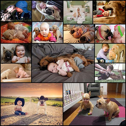 friendship-as-told-by-babies-and-their-dogs15
