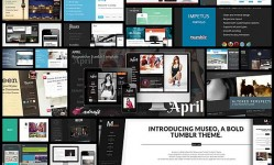 showcase-of-30-responsive-tumblr-themes-for-bloggers