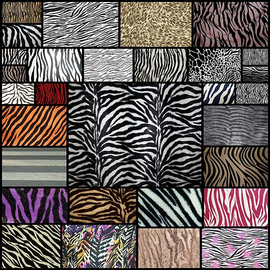 zebra-print-texture-for-free-download30