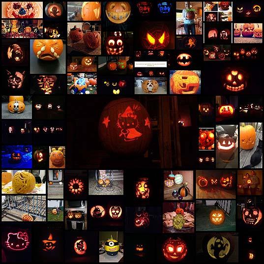 berries-your-pumpkins-rock-68-photos