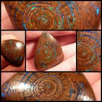 beautiful_and_rare_opalized_wood_boulder_opal_5_pics_1_video