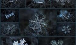 macro-close-ups-of-snowflakes-alexey-kljatov10