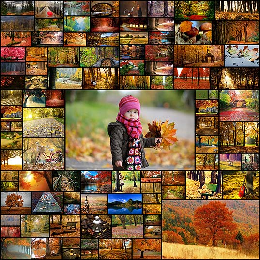 100-best-fall-season-2013-desktop-wallpapers