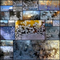 frost-on-glass-ice-flower-art20
