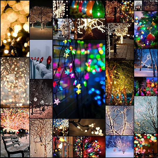 twinkle-lights-photography30