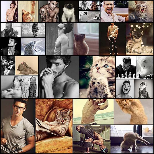 des-hommes-et-des-chatons-handsome-men-and-cute-cats-in-similar-poses17