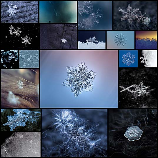 20-majestic-close-pictures-snowflakes