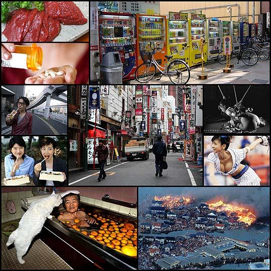 japanfact10