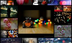 stylish-examples-of-bokeh-photography25