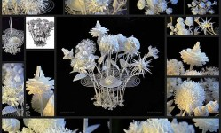 3d-printed-flower-bouquet-by-joshua-harker19