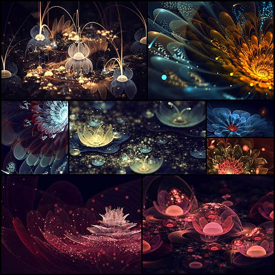 incredibly-beautiful-fractal-flowers-by-silvia-cordedda9