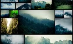 photographer-kimmo-savolainen-bavarian-forest20