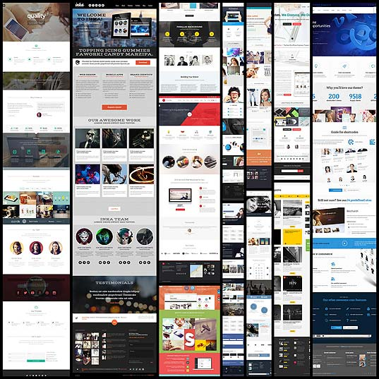 latest-responsive-wordpress-themes-for-web-and-graphic-agencies12