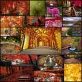 美しい秋の公園の写真(24枚)
