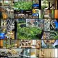 シンガポールの庭園がある超高層ホテルの写真(26枚)
