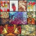 atelier olschinskyによるサイケでSF風なイラスト・アート(11枚)